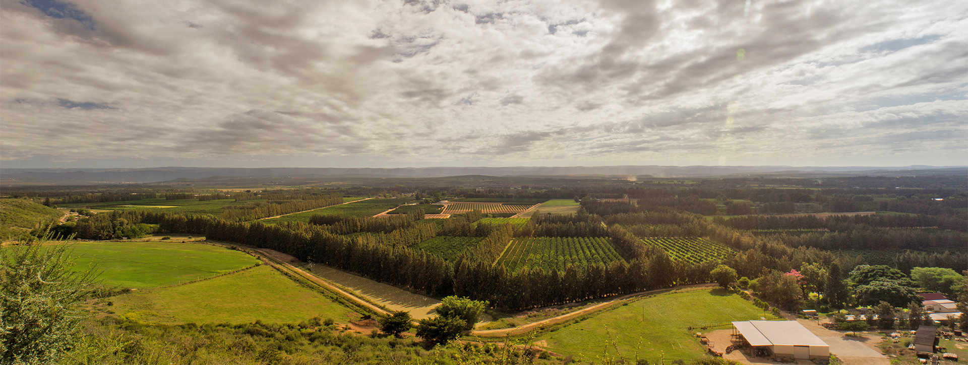 Sundays-river-valley-citrus-growers-paradise-south-africa